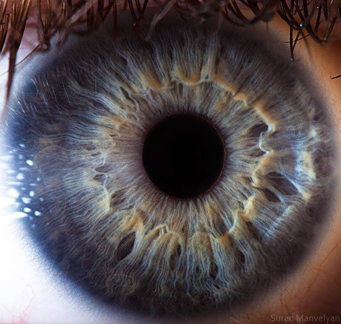 Macro photography of human eyes