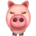 Horoscope Pig